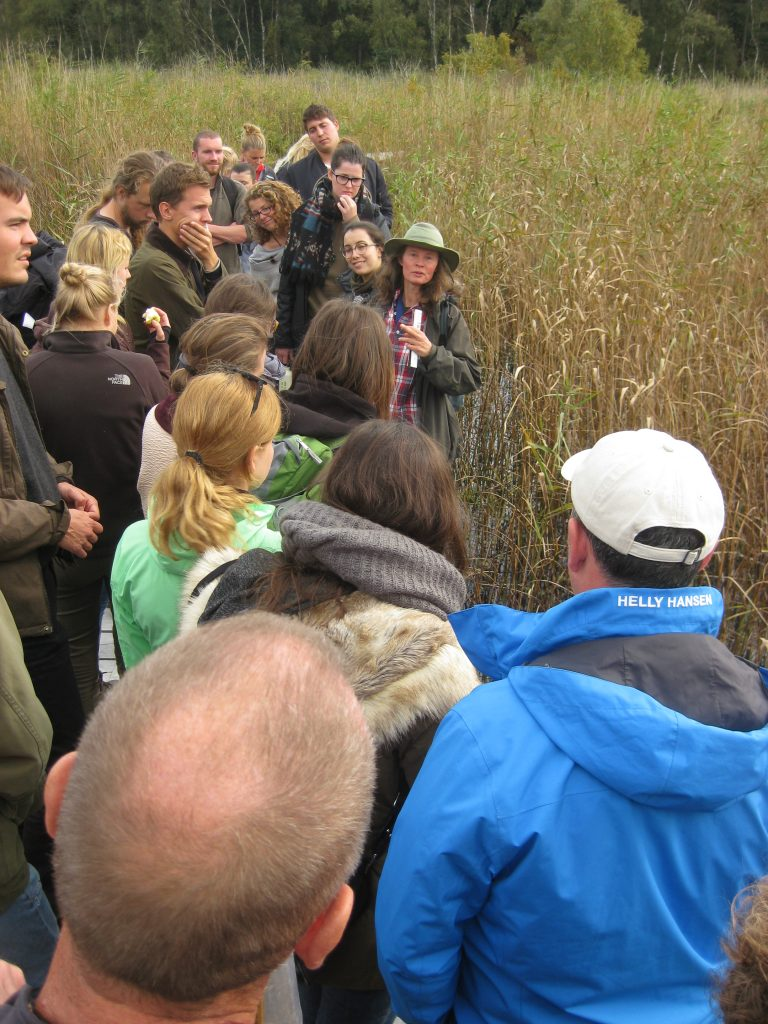 Students at boardwalk_In the reeds_ Bastemose in Denmark